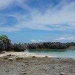 l'ile aux récifs
