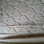 mold on mattress rwd roof inn pigeon forge