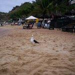 Playa Joao Fernandez