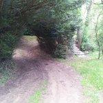 chemin d'acces au parking boueux