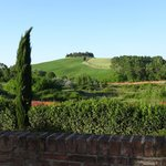 Classic Tuscan view from the room
