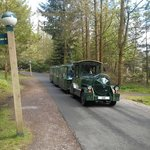 train service only avail in Longleat centreparcs