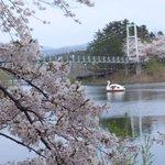 吊り橋と白鳥のボート