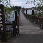 浮き橋もあります