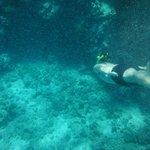 Tiran Island - Snorkeling
