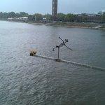 Дровосек над Рейном