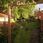 Lovely garden at the Dolphin Inn