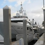 Pull up your Yacht, walk to the lobby to check-in!