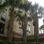 Hotel Hampton Orlando fundos