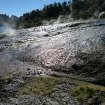 Many millions of litres of warm water run into the Waikato river each day
