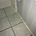 Dirty bathroom floor grout