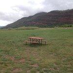 2 acre dog park.