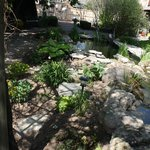 Enjoy our beautiful gardens with Koi Pond and stream