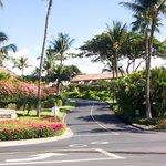 Maui Kamaole Entrance