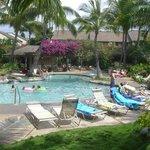 Tropical Pool Near J-105