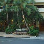 Palmeiras na entrada do hotel