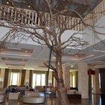 A árvore na entrada-Hotel Tivoli Victoria-Algarve