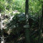 Massive boulder that slid down hillside!