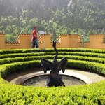 Swan fountain in the gardens