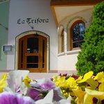 Photo of La Trifora
