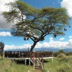 Estrade pour le point de vue sur le Kilimandjaro
