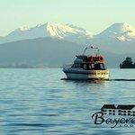 Boat trip anyone?