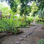 landscaping around