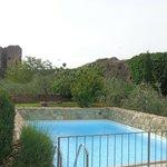 Der Pool mit Blick auf Stadtmauer