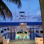 Free Spool Sportfishing - Private Charters Foto