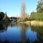 Gulbenkian Foundation gardens