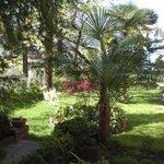 Mediterraner Garten - Residence Diana