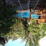 RM tropical garden