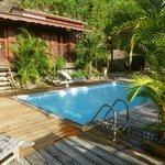 Une très jolie piscine entourée de plantes