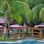 the pool and the resto