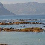 Boulders Beach-Cidade do Cabo