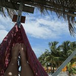 on the hammocks on the dock