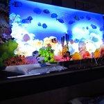 acquario finto con pesci in movimento come testiera letto