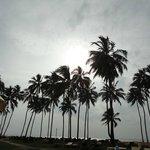 Sun set in Negombo