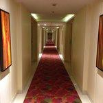 The beautiful corridor