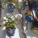 Calle Pozo de los Palos - prizewinning façade