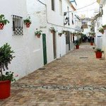 Calle Troyano spotted pots