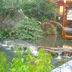 stream outside restaurant windows