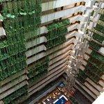 Vista do hotel interna!