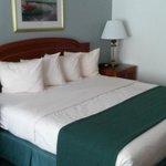 Large, Comfy Bed
