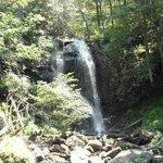 N. Ga. Falls