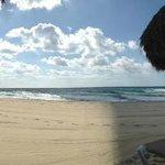 The Playa!