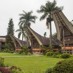 The cottages in Toraja style