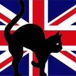 Au Secret du chat nous parlons aussi l'anglais