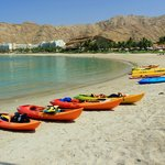 Free Kayaks