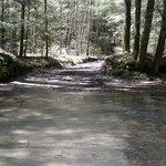 Creek crossings tend to be seasonal - but always be prepared!